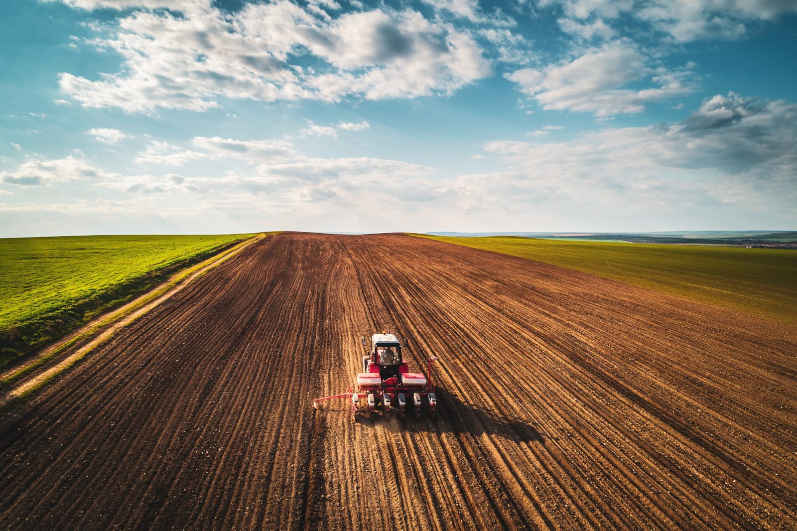 Climate Action 8+ sets new decarbonisation expectations for food ...